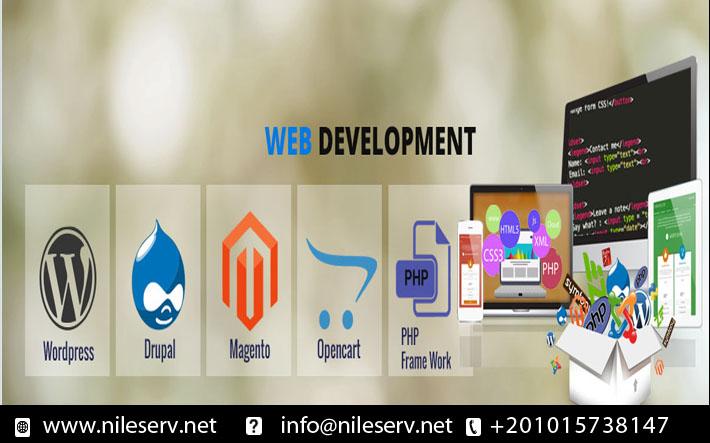 خدمات تطوير وتصميم المواقع